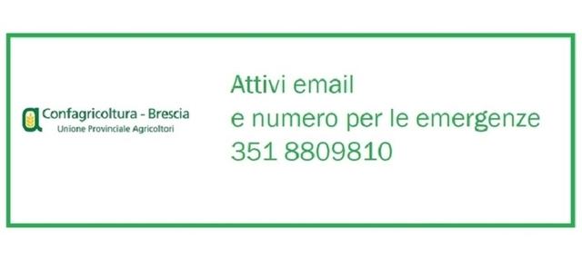 EMERGENZA CORONAVIRUS: chiusura uffici Confagricoltura Brescia
