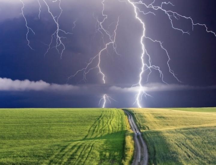 Tromba d'aria, le imprese agricole contano i danni