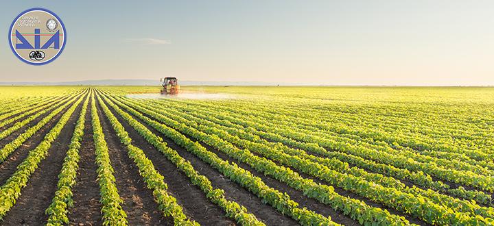 Obbligo della certificazione antimafia, il rischio di un nuovo adempimento burocratico a carico delle imprese agricole