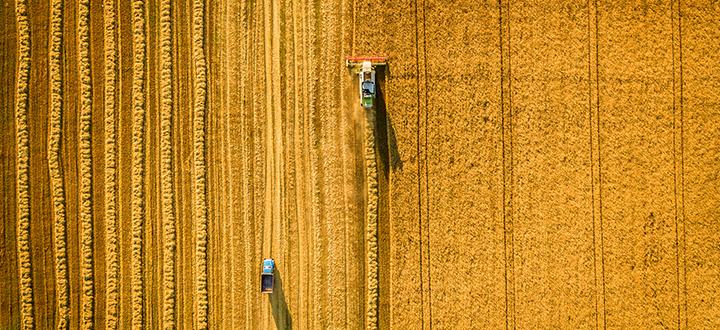 Si è chiuso un anno difficile per l'agricoltura italiana
