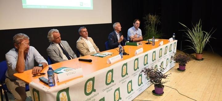 """Suinicoltura: benessere animale e biosicurezza , """"gli allevamenti bresciani si confermano all'avanguardia"""""""