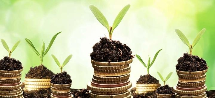 Moratoria mutui e finanziamenti