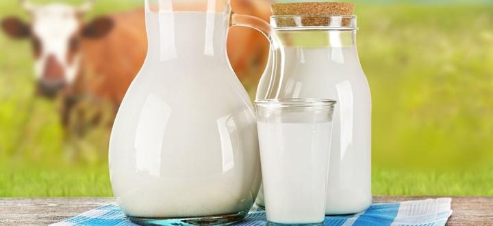 """Latte fresco, il ministero dice no all'ipotesi di allungare la scadenza. Barbieri: """"Tutelato il prodotto made in Italy"""""""