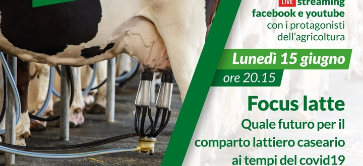 Focus latte. Quale futuro per il comparto lattiero caseario ai tempi del covid19