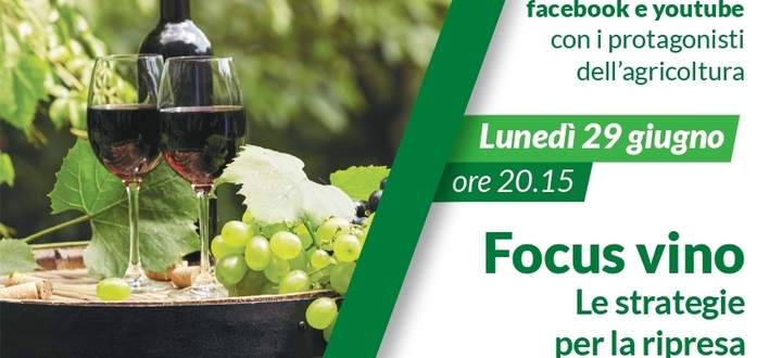Focus vino. Le strategie per la ripresa