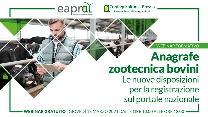 Anagrafe Zootecnica Bovini: Le nuove disposizioni per la registrazione sul portale nazionale