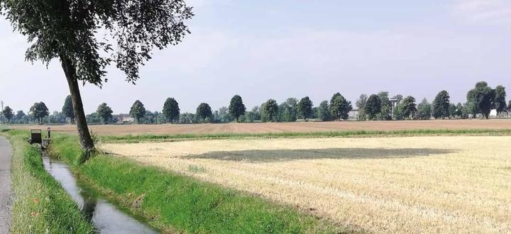 Sviluppo rurale, ottimo premiare la voglia d'investire e innovare delle aziende agricole bresciane