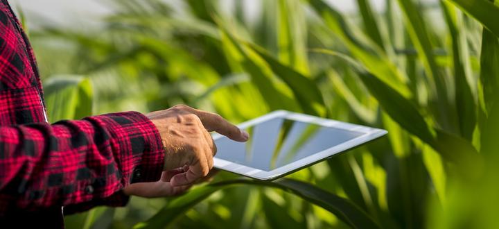 Per lo sviluppo e il potenziamento dell'agricoltura serve una connettività stabile e potente: Confagricoltura Brescia mappa le aree scarsamente coperte