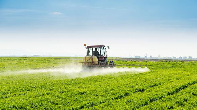 """Glifosato: Fao ed Oms """"scagionano"""" l'agricoltura"""