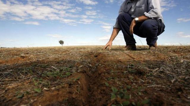 La grandine danneggia le colture nel Bresciano