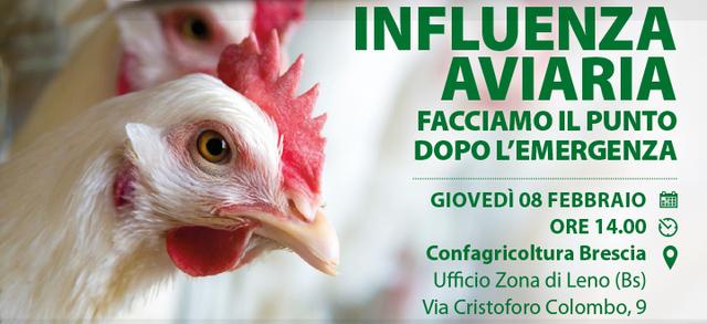 Influenza aviaria, facciamo il punto dopo l'emergenza