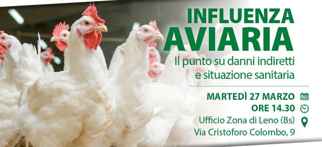 Influenza aviaria, l'emergenza continua: Confagricoltura vuole fare il punto sui danni e sulla situazione sanitaria