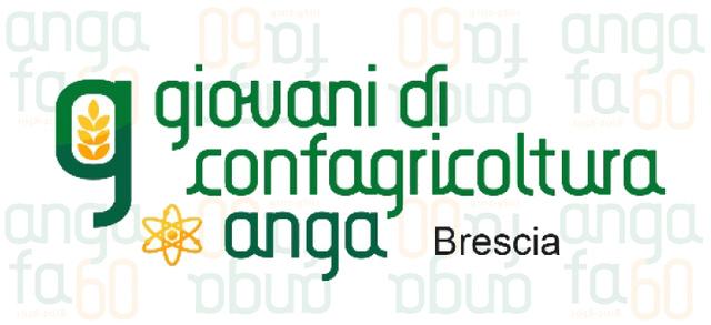 Anga Brescia, una grande festa per i sessant'anni di storia