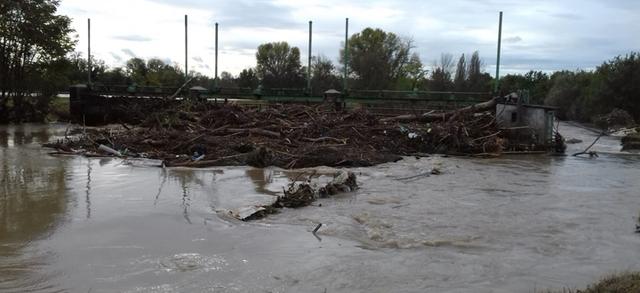 """Ondata di maltempo, anche a Brescia danni ingenti per il settore agricolo: """"Le assicurazioni sono ormai fondamentali"""""""