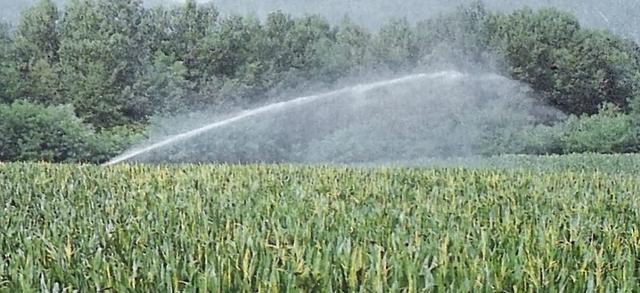 """Acqua, crescono le preoccupazioni. Confagricoltura Brescia:  """"Necessario attivare velocemente il tavolo regionale"""""""