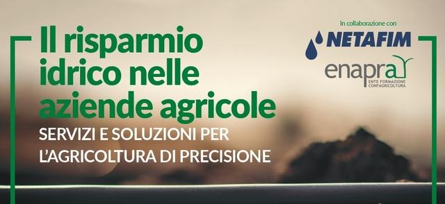 Il risparmio idrico nelle aziende agricole: servizi e soluzioni per l'agricoltura di precisione