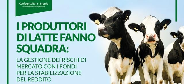 I produttori di latte fanno squadra: la gestione dei rischi di mercato con i fondi per la stabilizzazione del reddito