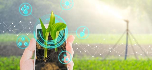 Agricoltura 4.0: il nuovo credito d'imposta 2020 esteso anche alle imprese agricole