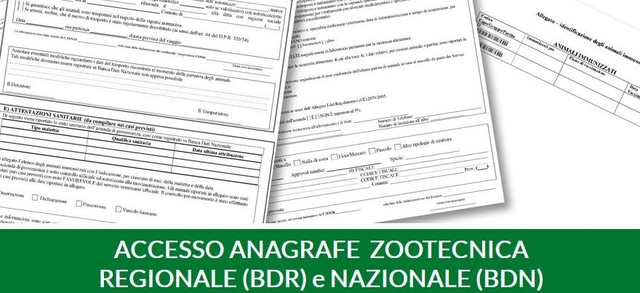 Accesso Anagrafe Zootecnica Regionale (BDR) e Nazionale (BDN)