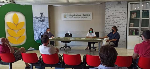 """Confagricoltura, la bresciana Rita Rocca guida la federazione regionale: """"Stagione difficile, è necessario orientarsi sulla ricerca e sulla tecnica per affrontare l'alternanza delle annate"""""""