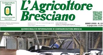 Scarica il n. 13 dell'Agricoltore Bresciano