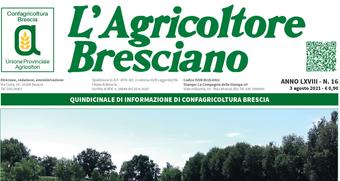 Scarica il n. 16 dell'Agricoltore Bresciano