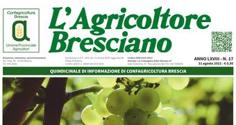 Scarica il n. 17 dell'Agricoltore Bresciano
