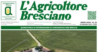 Scarica il n. 18 dell'Agricoltore Bresciano