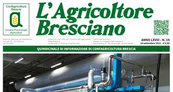 Scarica il n. 19 dell'Agricoltore Bresciano