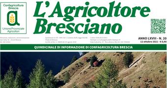 Scarica il n. 20 dell'Agricoltore Bresciano