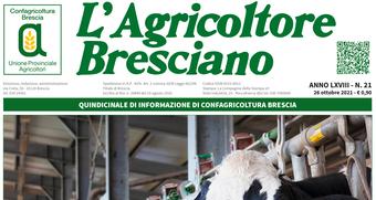 Scarica il n. 21 dell'Agricoltore Bresciano