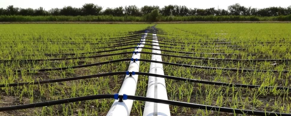 Gestione delle risorse idriche
