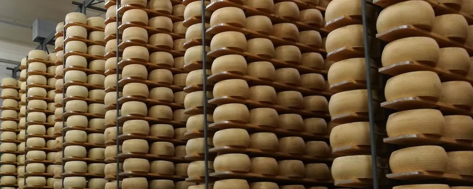 Latte, Brescia leader per qualità e quantità